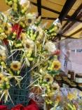 chocolate sunflowers in tuscany :)