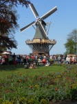 windmill at the garden